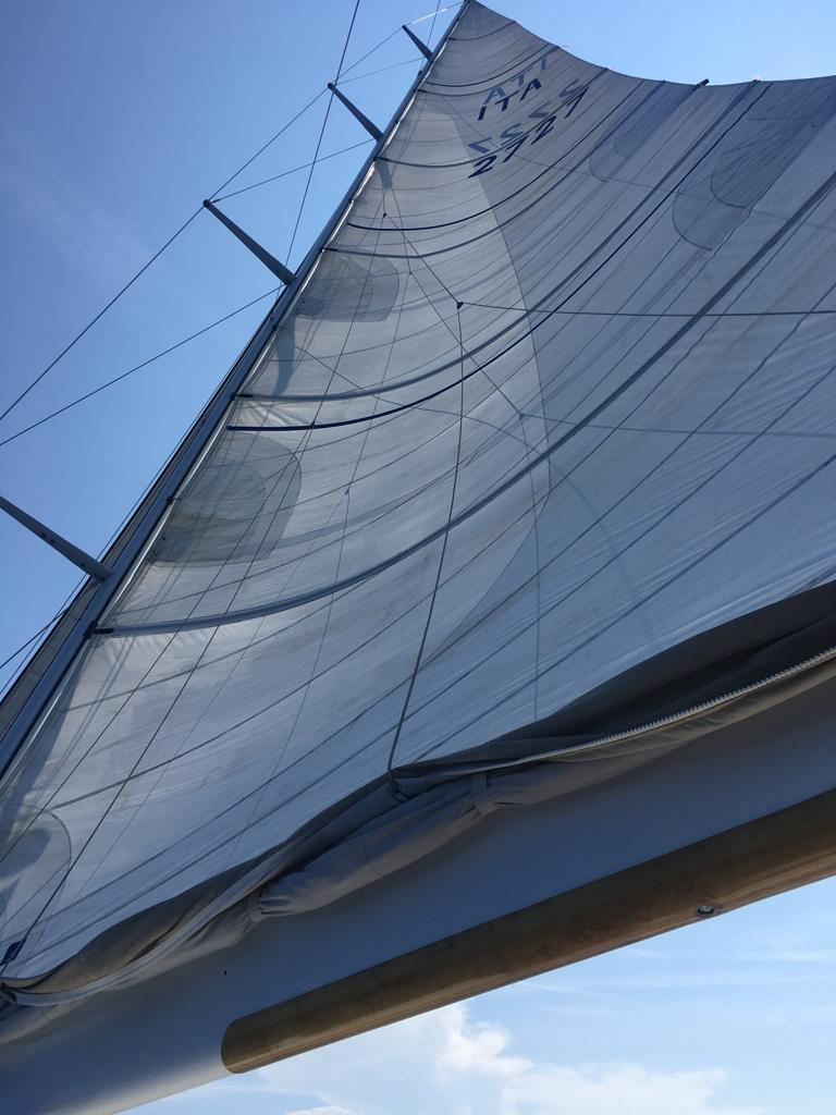 logica sail